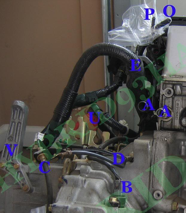 K20/24 Sensor And Parts/#s Location