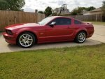 bl817's 2005 Ford Mustang GT